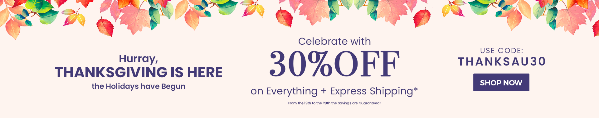 Celebrate with 30% Off on Everything + Express Shipping